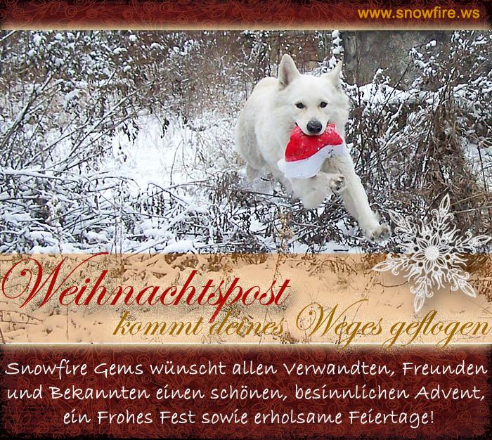 Weih.gruss_fliegender_Topaz_2012_www.snowfire.ws